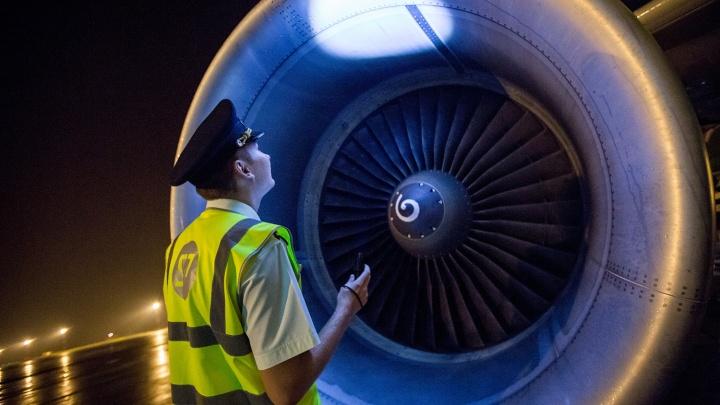 S7 проиграла крупный иск аэропорту Томска за птицу в двигателе