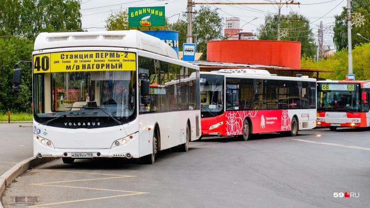 Билеты подорожают? А что будет с маршрутами? Пять ответов о новой транспортной модели Перми