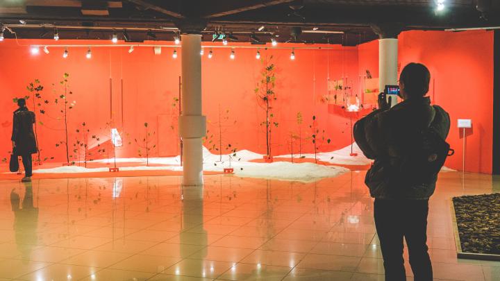 Деревья, вода и «ожившие» части тела: в PERMM открыли новую выставку Extemporary