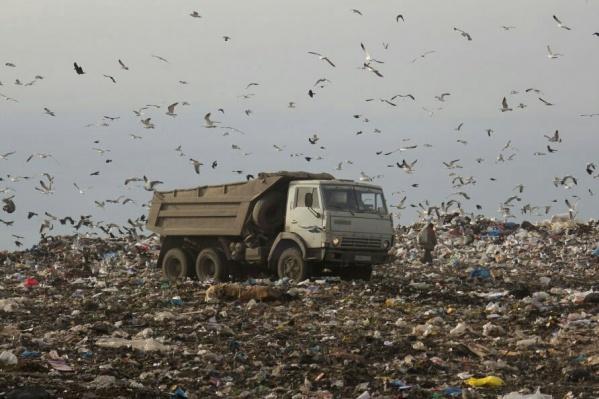 Выбросы от свалки занижали на бумаге в два раза, но экологи вскрыли махинации и пошли в суд
