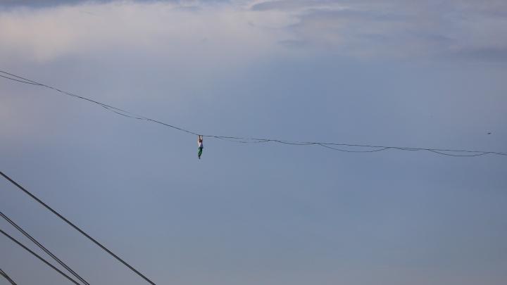 Эпичные фото и видео: каскадер показал трюки на канате над вантовым мостом