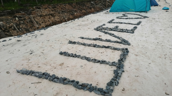 Рослесхоз отказался отдавать землю у Шиеса «Технопарку» под промышленные нужды