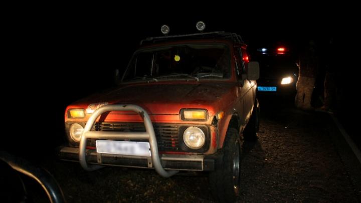 «Баранину везу»: охотника поймали на трассе с убитой краснокнижной косулей
