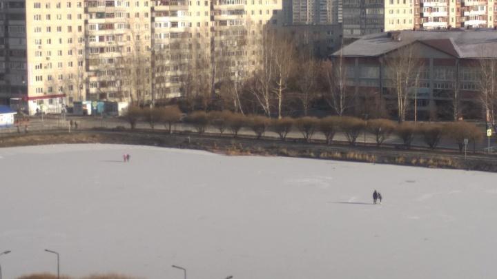 Опасные игры на тонком льду: тюменцев будут штрафовать за игры и прогулки на едва замерзших водоёмах