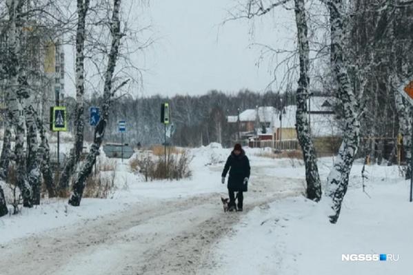 Спасатели попросили пешеходов быть внимательными на дорогах