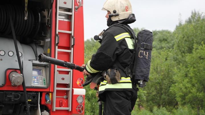 Гулять по лесу — запрещено: за сутки в Поморье трижды тушили пожары