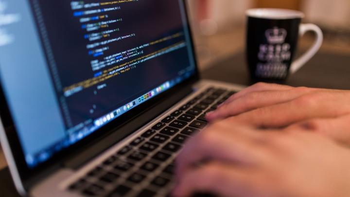 В Новосибирске появилась возможность освоить профессию веб-программиста всего за два месяца