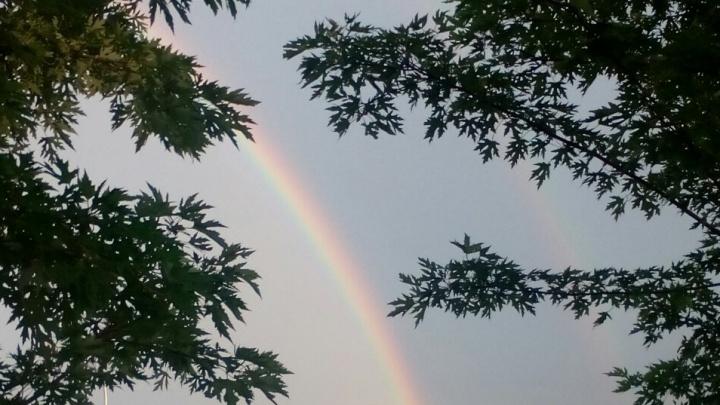 Волгоградские болельщики показали яркую радугу, окутавшую новый стадион