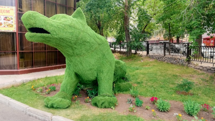 В парке Кирова появился сказочный волк из зелени. У него под боком тут же поселились живые щенки