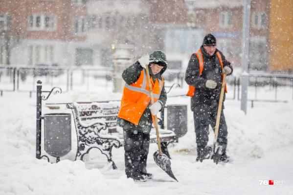 Синоптики на днях ожидают сильный снегопад в Ярославле