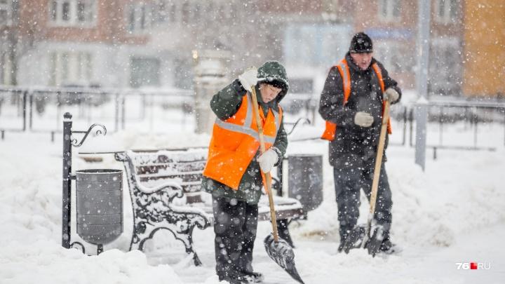 Балканский циклон ещё раз испытает ярославских коммунальщиков: когда город завалит снегом