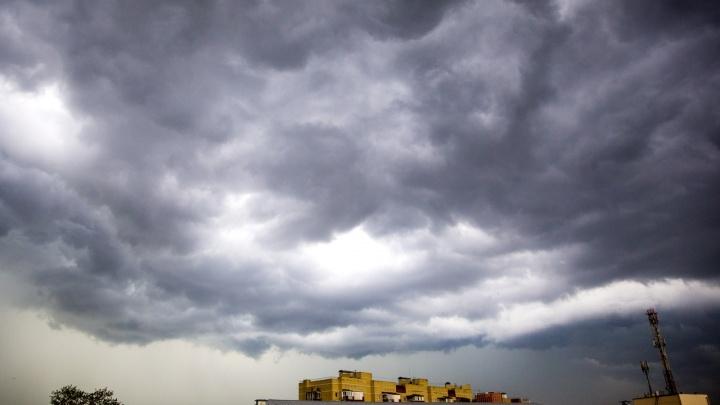 Сдует всех: обрушившийся на Ярославль ветер станет ещё сильнее