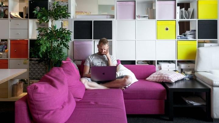 Бухгалтер любит штангу, юрист рисует пейзажи: почему в уральскую IT-компанию берут только увлечённых