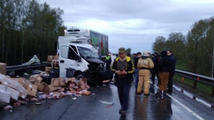 Встречные грузовики сошлись в смертельном ДТП на трассе