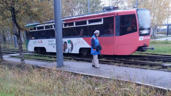 Ярославцы стали ездить бесплатно: из общественного транспорта пропали кондукторы