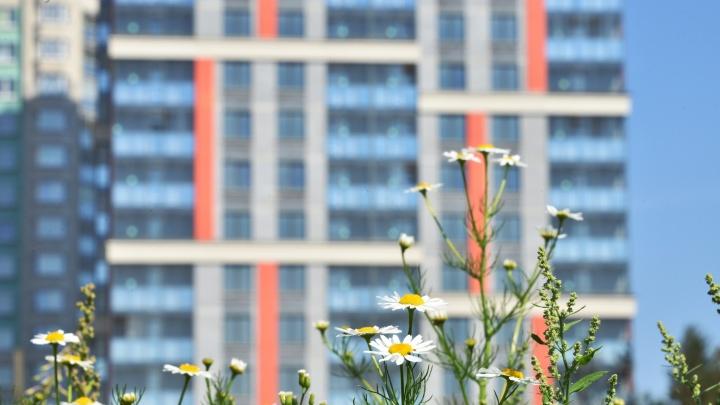 Как купить квартиру, если денег нет: лайфхак от «Атомстройкомплекса»