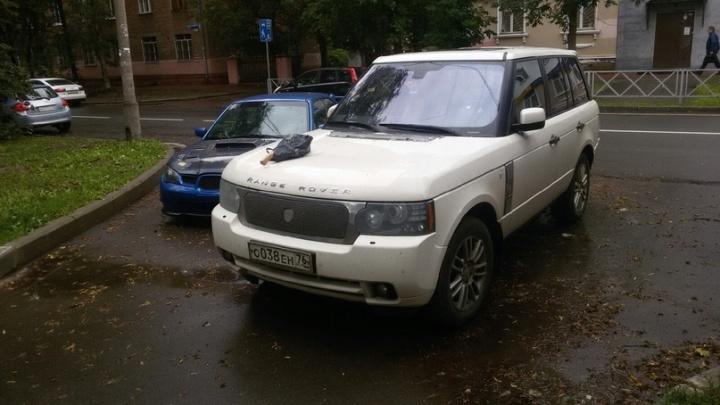 «Всё выглядело очень странно»: в центре Ярославля в капот Range Rover воткнули топор