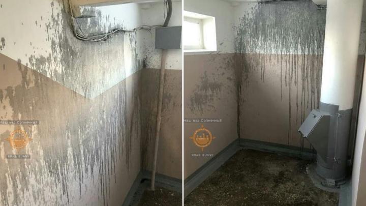 Рабочие испортили сделанный ими же ремонт в подъезде в Солнечном