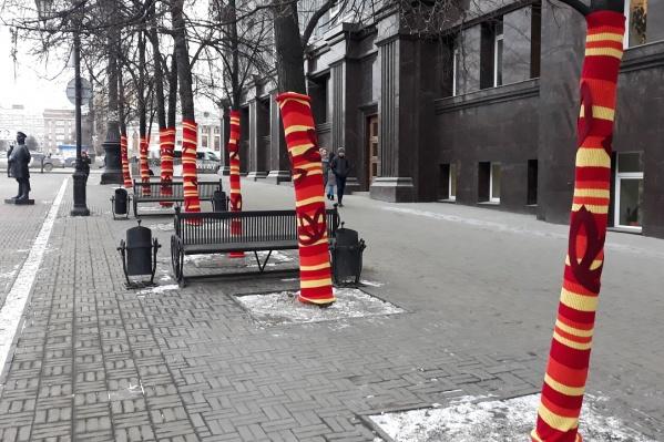 В такой холод хочется утеплиться даже деревьям Кировки!