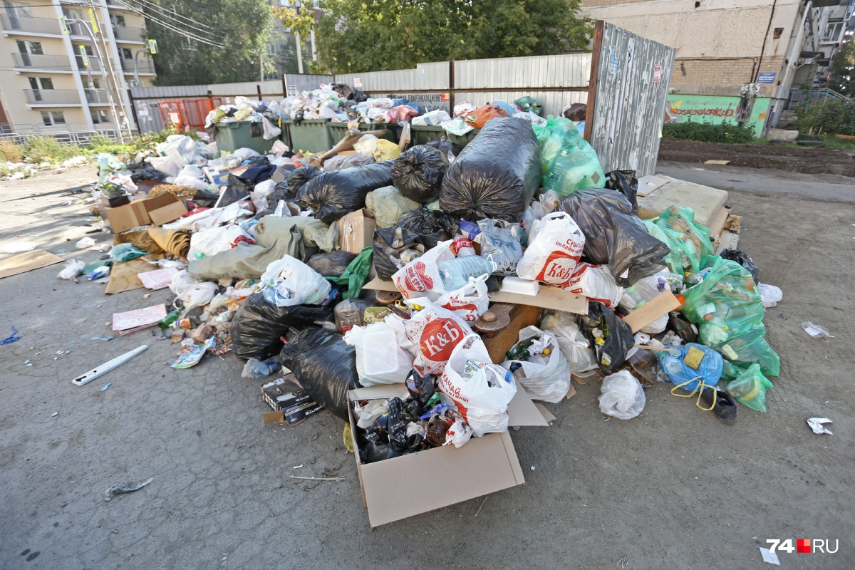 Если не закупить новые контейнеры, мусорный коллапс в регионе может повториться