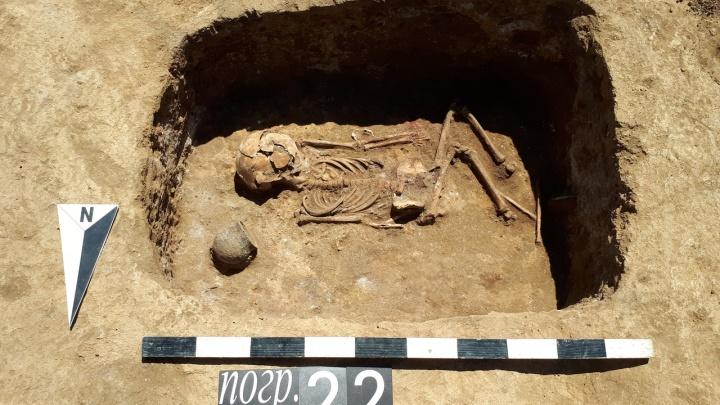 Их похоронили тысячи лет назад: в кургане под Ростовом нашли останки детей из бронзового века