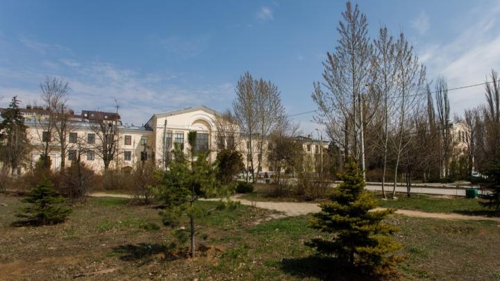 60 миллионов на реконструкцию парка Гагарина в Волгограде выиграл единственный участник конкурса
