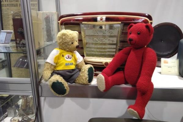 В выходные пройдет фестиваль плюшевых медведей и их друзей «ТеддиЕврАзия»