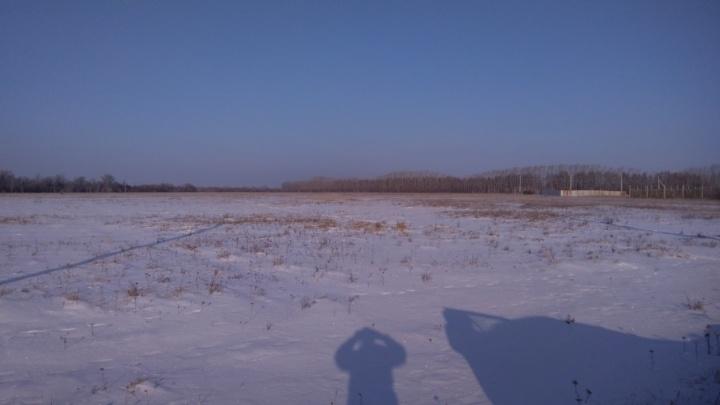 «Школ и садиков нет, одни поезда»: отцу троих детей из Челябинска дали землю в чистом поле