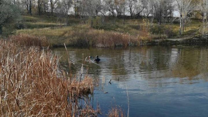 В Самарской области в карьере нашли утонувшего мужчину