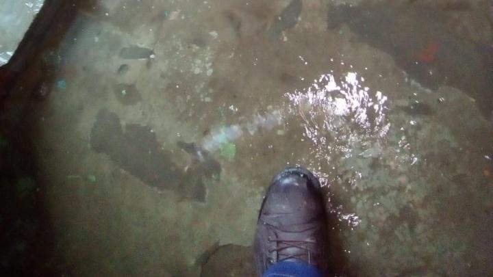 «После гололеда текут целые реки»: подъезд на севере Волгограда тонет из-за забившейся трубы