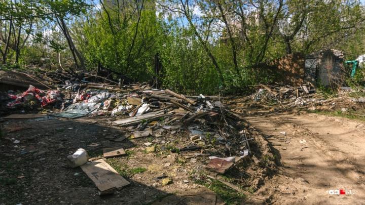«Мусором завалены овраги и поля»: в Самарской области проведут генеральную уборку