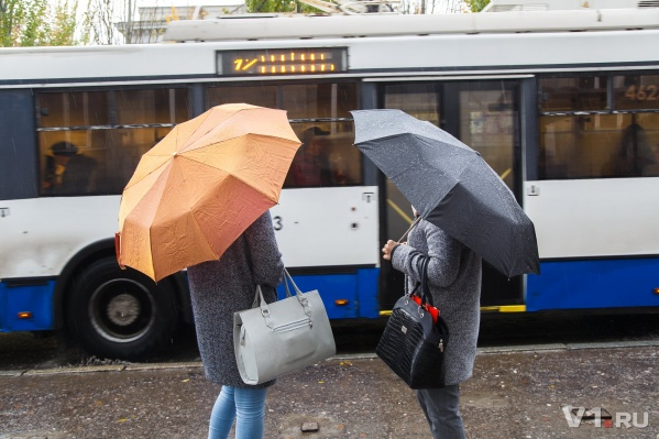 В Волгоградскую область придут дожди с грозами и сильным ветром