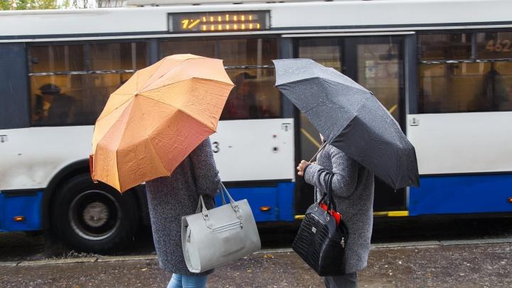 Расчехлять куртки и пальто: в Волгоградской области похолодает до 1 градуса