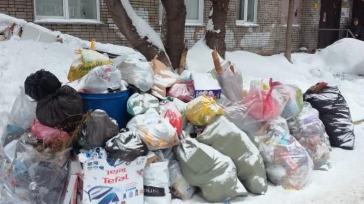 Утонули в мусоре: новосибирцы продолжают жаловаться на горы отходов во дворах