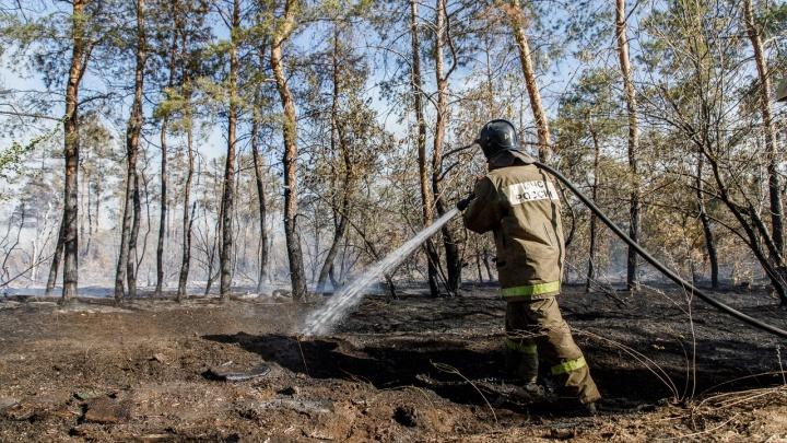 Пожар в сосновом бору на Ангарском тушили всю ночь