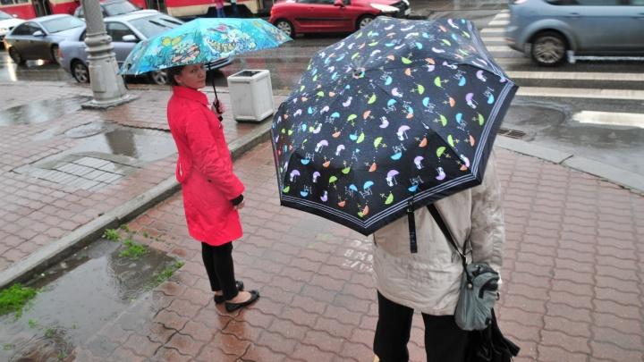 Дожди, грозы, порывистый ветер: в МЧС предупредили об ухудшении погоды