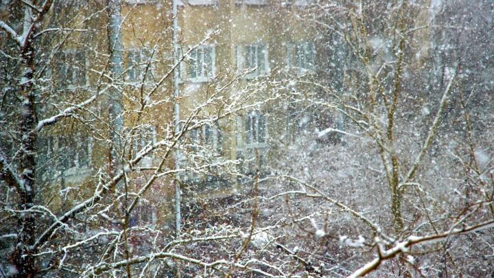 МЧС объявило штормовое предупреждение в Омской области