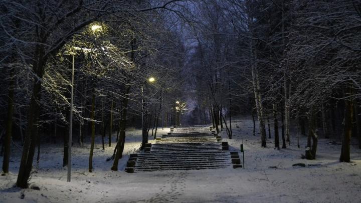 В парке Маяковского провели свет в тёмных аллеях
