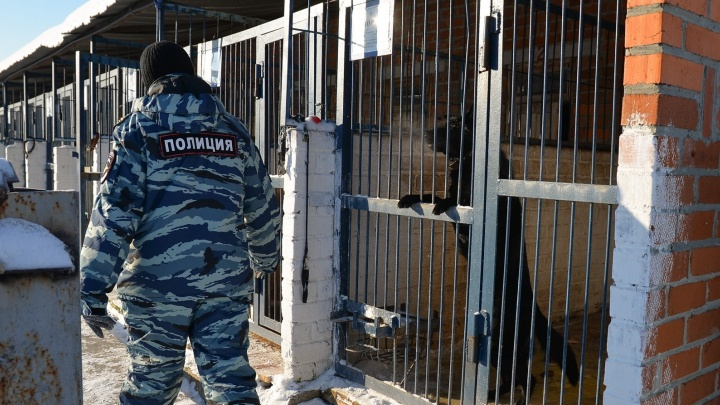 В Берёзовском вынесли приговор полицейскому, который выстрелил мигранту в голову