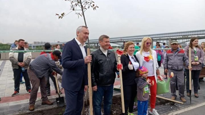 В костюмах и с лопатами: чиновники высадили деревья на Михайловской набережной