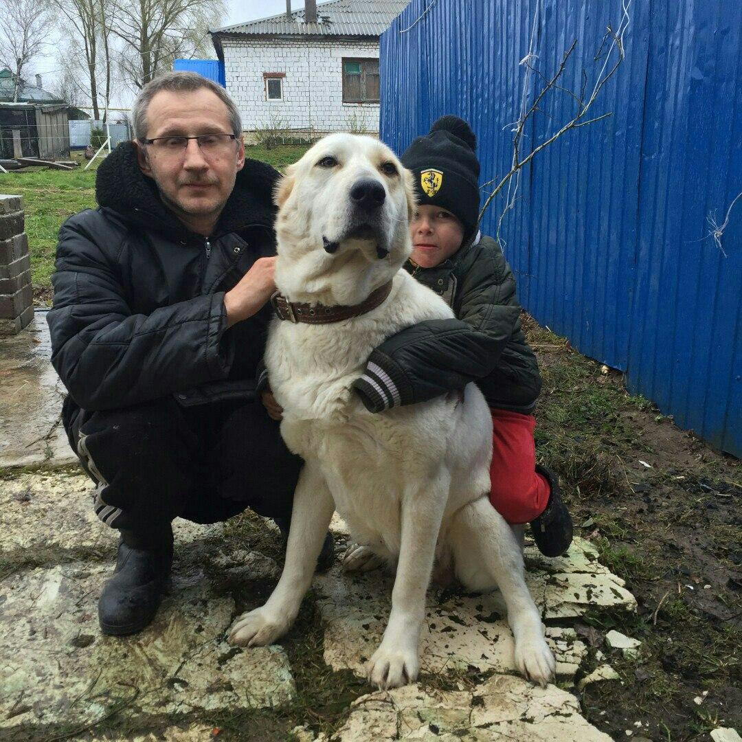 40-летний Андрей Милешин пропал вНижегородской области