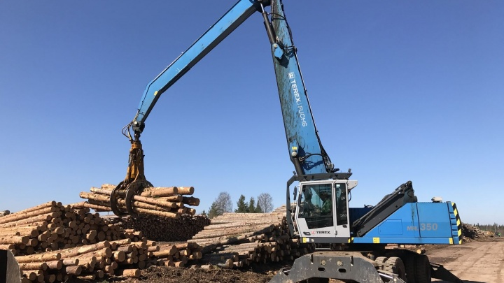 Леспромхозы ГК «Титан» заготовили за первое полугодие более 1,3 миллиона кубометров леса