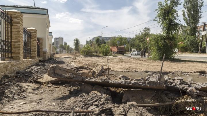 «Это будет адская сковородка»: волгоградка о вырубленной под сквер аллее у 7-й больницы