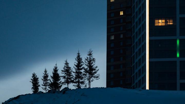 Началась новогодняя распродажа квартир в Новосибирске: скидки до 320 000 рублей