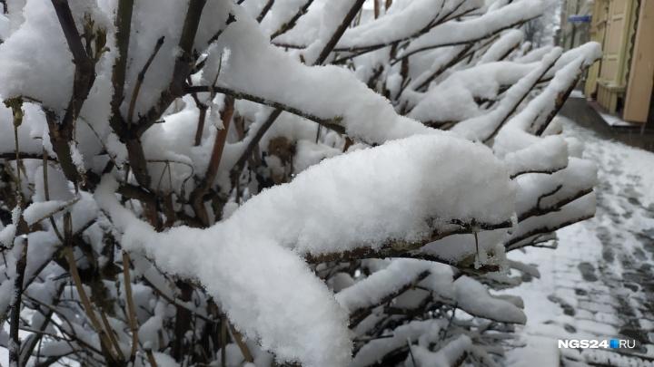 Синоптики рассказали, когда закончится снегопад