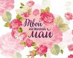 Любовь, нежность, май найдутся на «Домашнем»