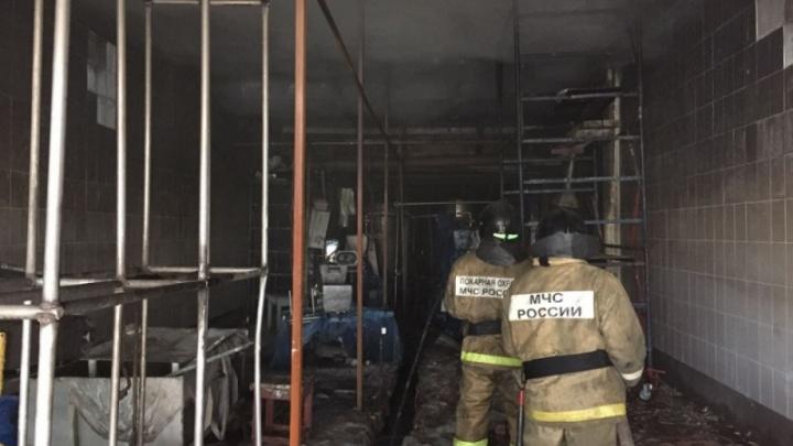 В Башкирии сгорел молочно-консервный завод: четверо рабочих получили ожоги
