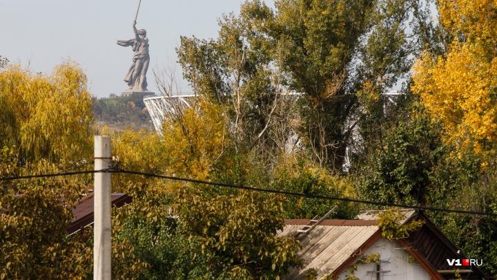Снова в минус: к концу недели в Волгоградскую область вернутся ночные заморозки