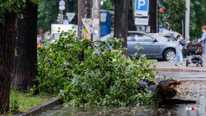 МЧС продлило в Прикамье штормовое предупреждение