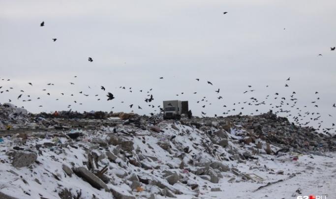 В Самарской области закроют 4 незаконных свалки